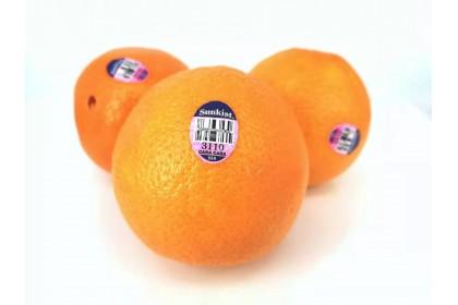 orange cara cara sunkist