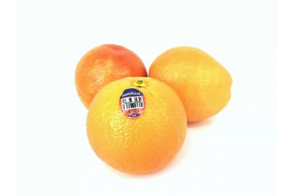 orange blood sunkist