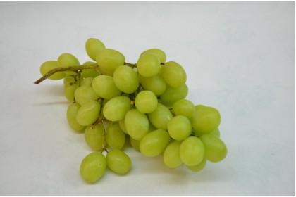 grape seedless green