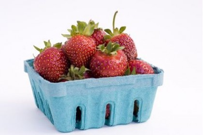 ONT Strawberry
