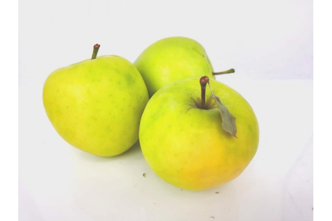 Apple Ginger Gold Ontario