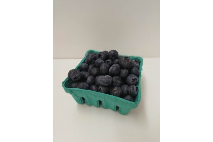 berries Blueberry