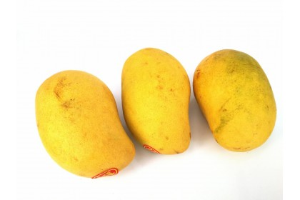 mangoes Yellow