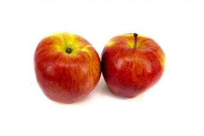 Apple Ambrosia
