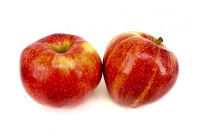 Apple Organic Royal Gala