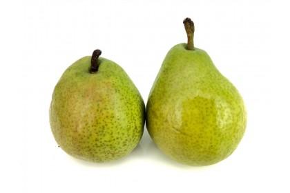 Pear Anjou