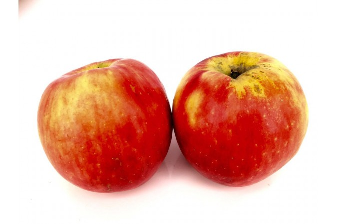 Apple Honey Crispt