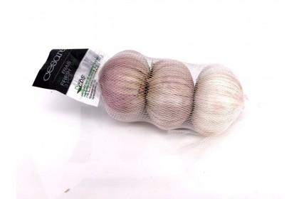 Garlic (3 Pics )