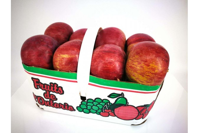 apple Basket courtland ont