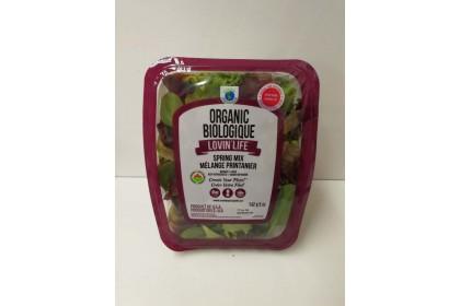 baby Spring Mix  Organic