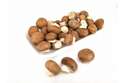 Mushroom Mini BROWN